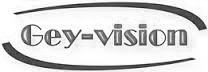 logo geyvision