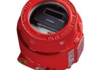 55000-065 * Detector de flacara conventional Exd