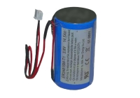 BAT WT 4911 20V * Baterie sirena WT4911